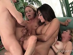 Orgasm starved cougars having hardcore sex in 4some